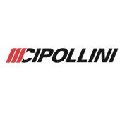 CIPOLLINI(チポッリーニ)